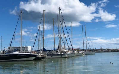 7 Things You Didn't Know About Estepona